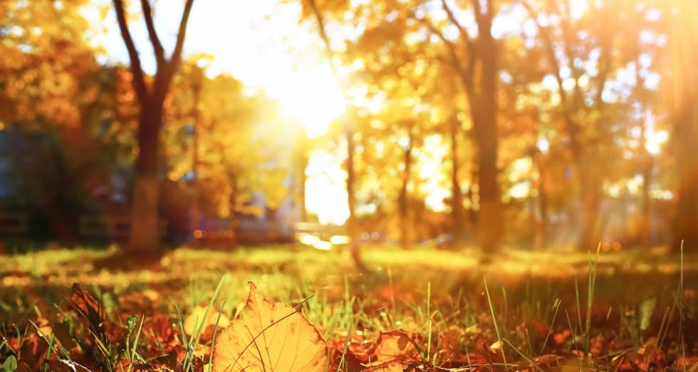 autumn-weather